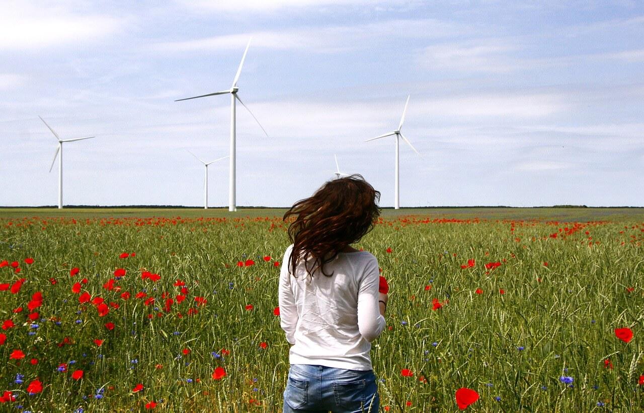 Girl walking through poppy field towards wind turbines