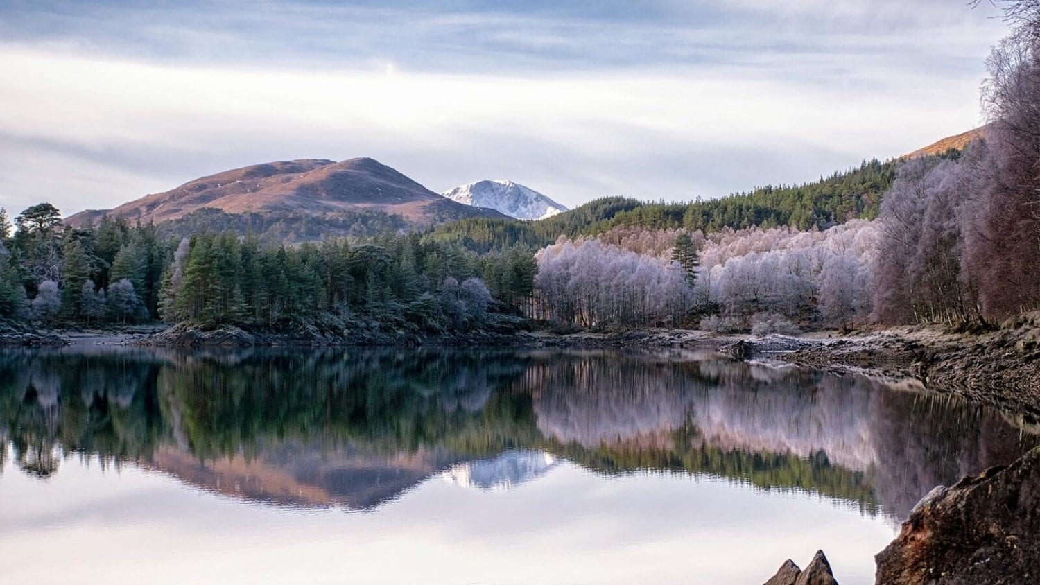 Glenn Affric forest and lake in the frost