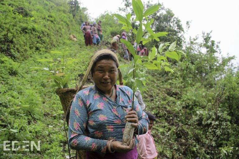 Bhima Sharu in the Nepal tree nursery